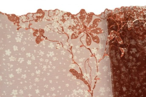 Brwon Embroidered lace