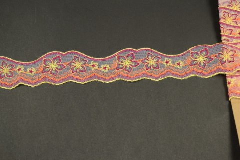 Narrow Embroidered lace