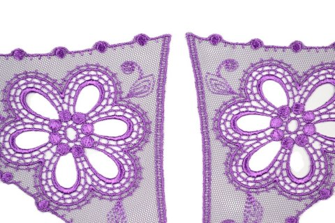 Embroidered applique on tulle pairs