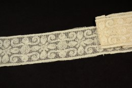 Light beige color Embroidered lace