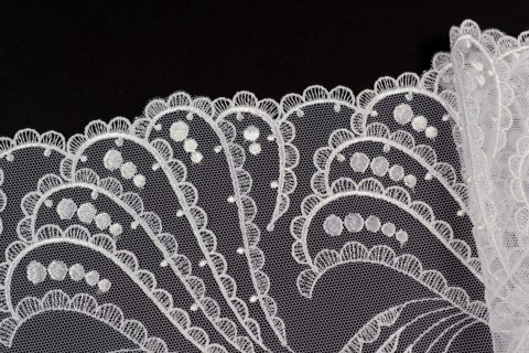 White Embroidered lace on tulle