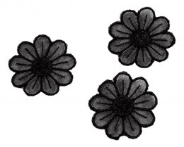 Black Embroidered appliques 4pcs.